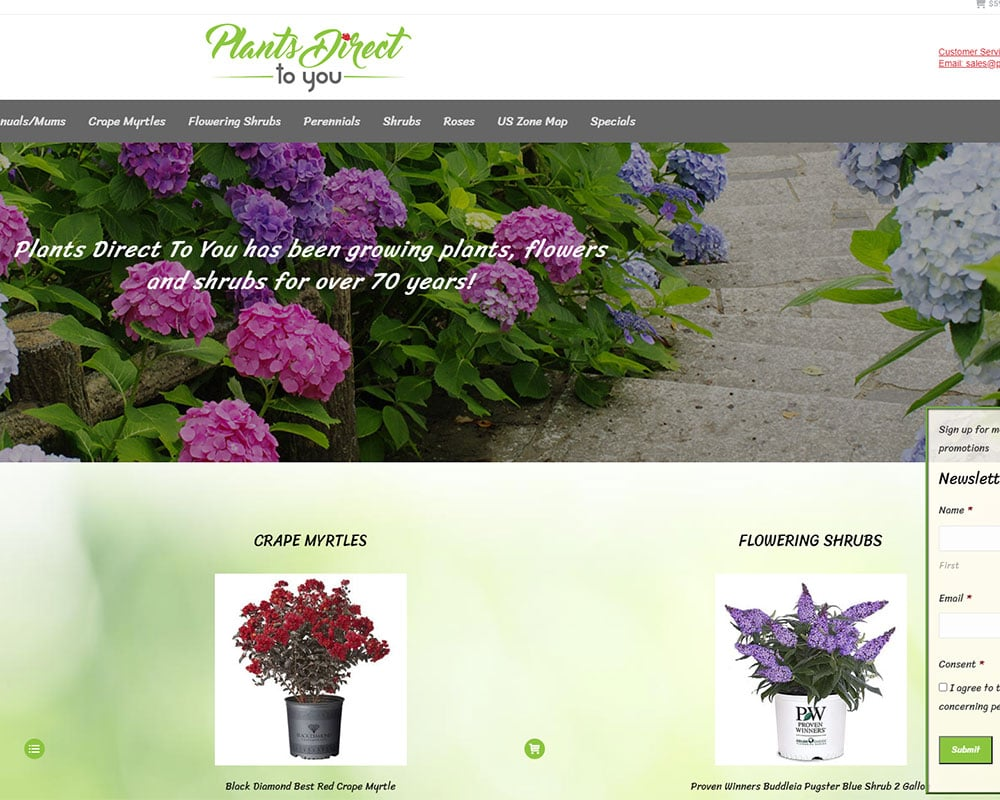 Plants Direct To You